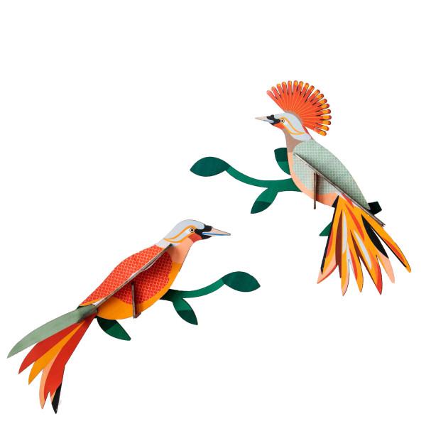 3D-Wanddeko-Paradiesvogel-paar-Obi