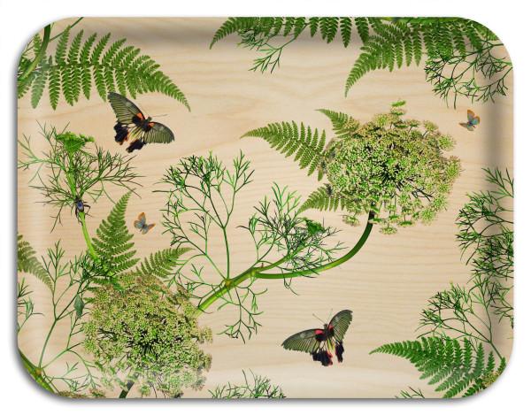 Arytrays Tablett Dill Natural Birch Michael Angove 43 x33 cm